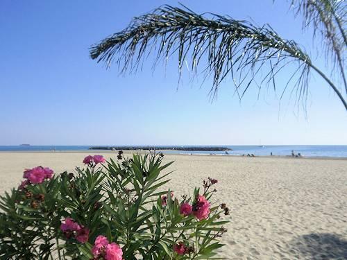 x_cap_dagde_beaches.jpg